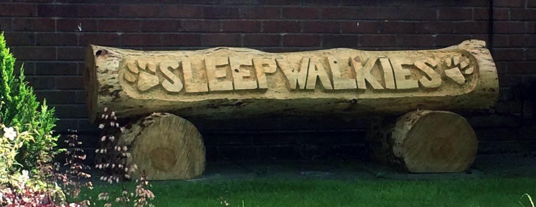 The Sleepwalkies log!